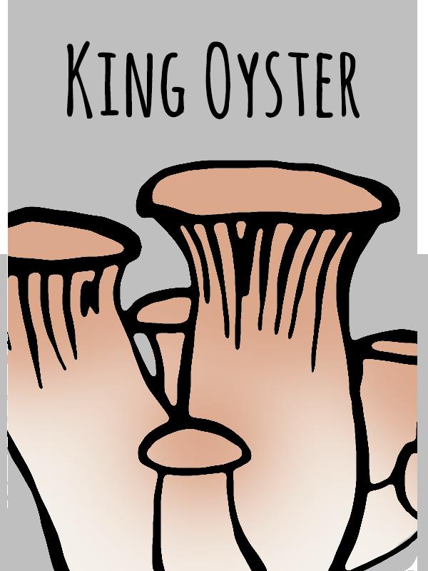 kingoyst